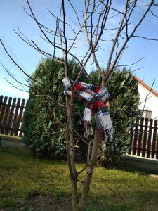 Ochrona drzew przed zimą- Ujemna temperatura
