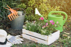 kwietniowe prace w ogrodzie